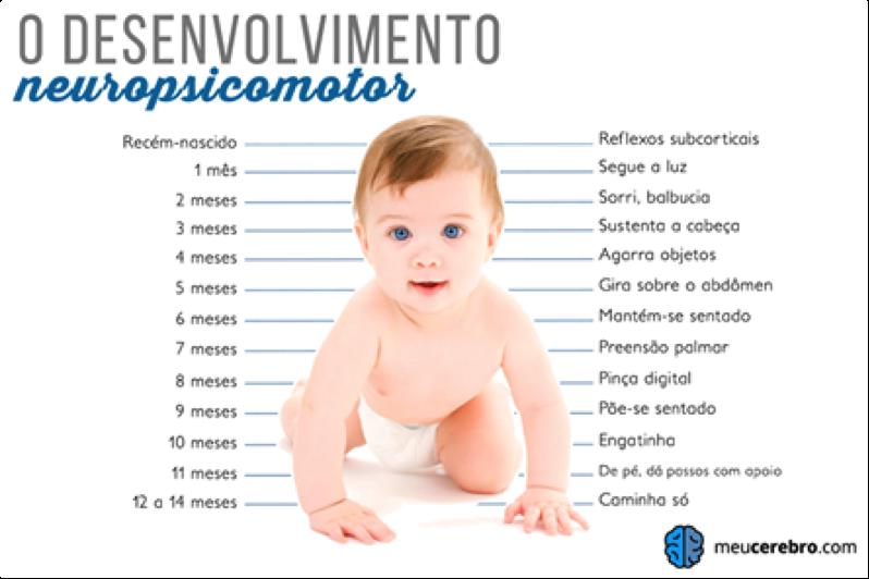 Acompanhamento do Desenvolvimento do Bebê