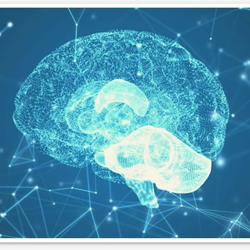 Neuropsicologia em Santo Andre