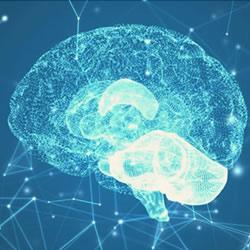 Neuropsicologia Santo Andre